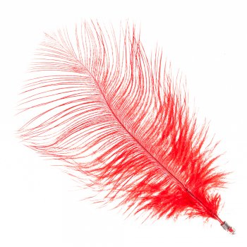 Перьевой элемент. Красный. 11 см