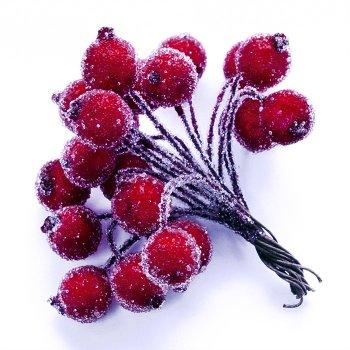 Ягода Калини в цукрі, червона