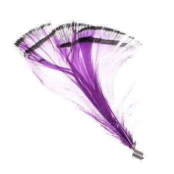 Перьевые элементы фиолетовый